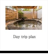 Day trip plan
